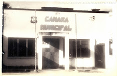 CLIQUE NA IMAGEM PARA CONHECER A HISTÓRIA DA CÂMARA MUNICIPAL DE TARAUACÁ