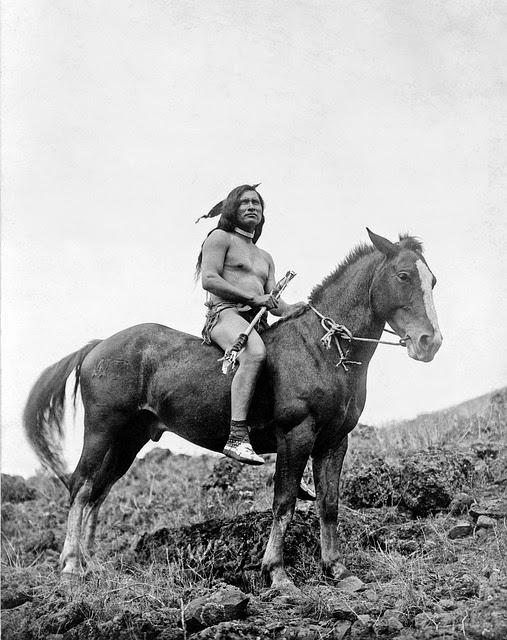 nativos americanos en los Estados Unidos