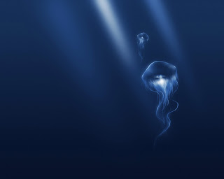 Jellyfish Wallpapers