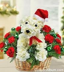1800 Flowers Christmas Gifts