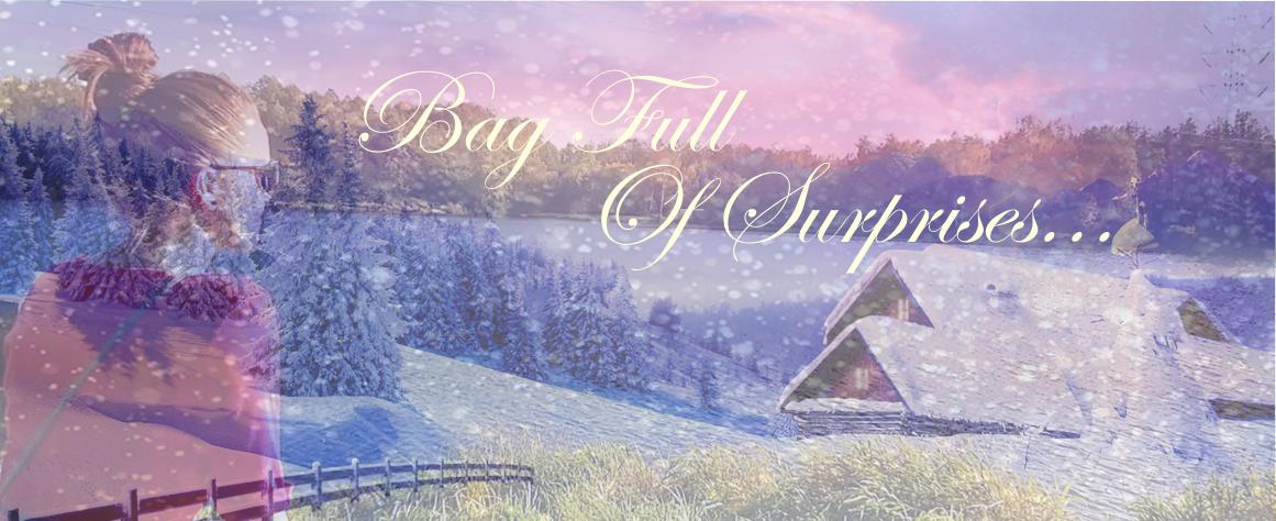 Bag Full Of Surprises