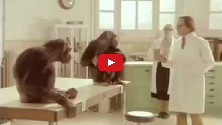 This man tried to test the chimps intelligence, however the chimps tested the man's humanity!