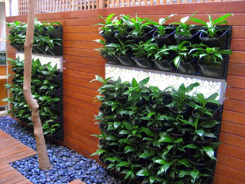 Vertical Vegetable Garden Design – Home Design And Decorating