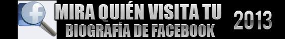 Contador de Visitas 4.0