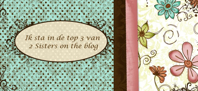 Ik sta in de top 3 bij 2siters on the blog
