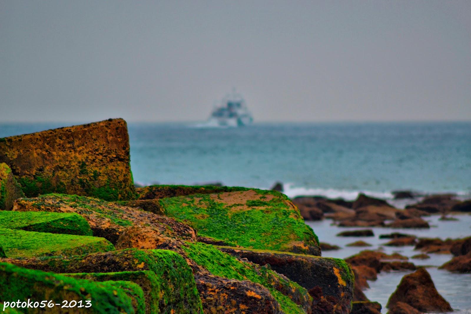 Bloques con el verdin de la mar Rota