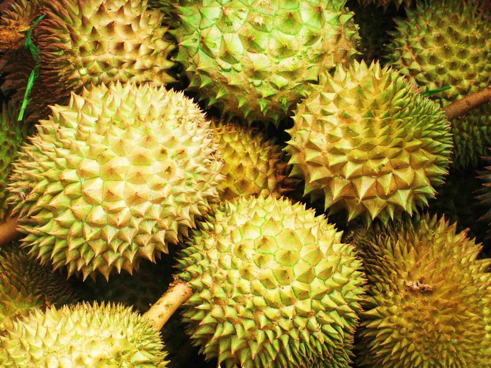 Durian - Kraliyet Meyvesi