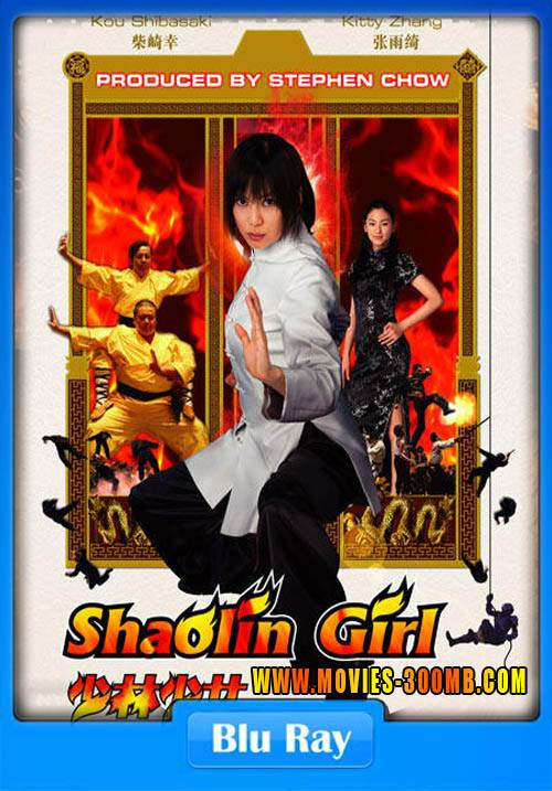Shaolin Girl 2008 Hindi Dubbed BRRip 720p Poster