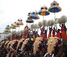Kerala Elephant Festival in India