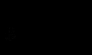 2017 Bronze Sponsor