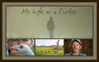 http://www.baseballphd.net/news/my-life-as-a-turkey-2.html