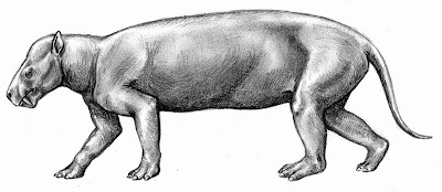 mamiferos del paleoceno Dinocerata Prodinoceras