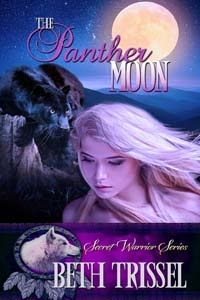BOOK 3--SECRET WARRIOR YA FANTASY ROMANCE SERIES