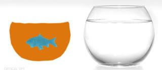 goldfish optical illusion