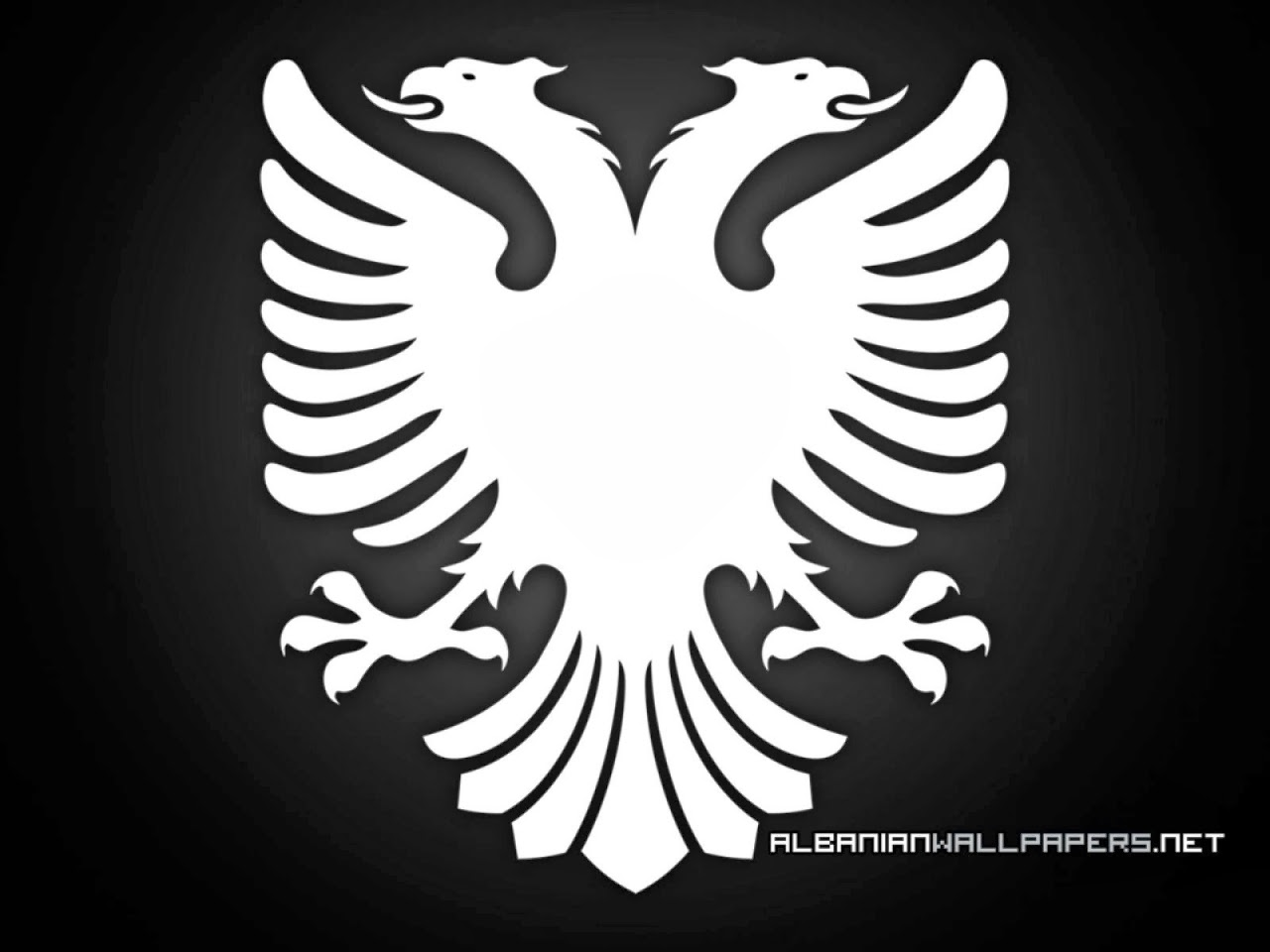 of the jungle eagles in symbols albanian eagle