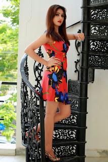 Actress Model Sony Charishta Latest  Pictureshoot Gallery  036