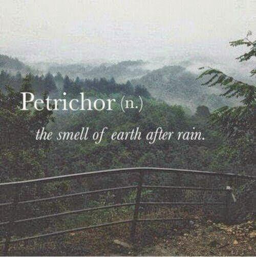 Cheiro de terra molhada