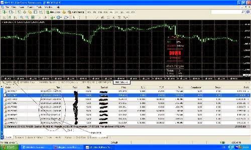 Secret Trading forex