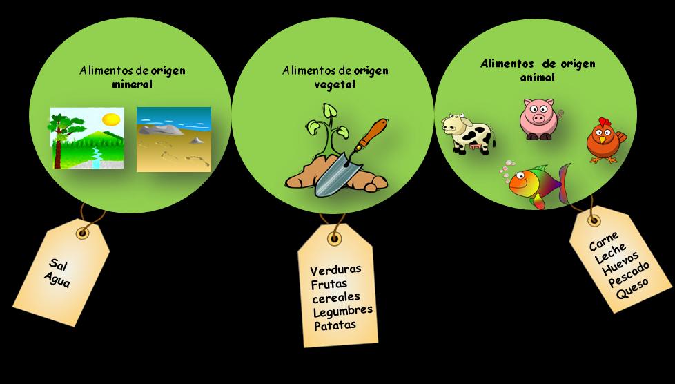El origen de los alimentos ~ Salud y bienestar