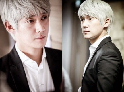 Korean Drama Dr. Frost Subtitle Indonesia