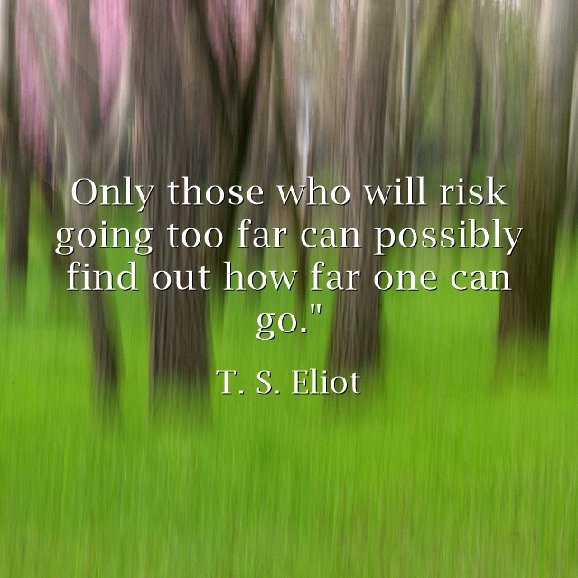 Only those who will risk going too far can possibly find out how far one can go. T. S. Eliot quote