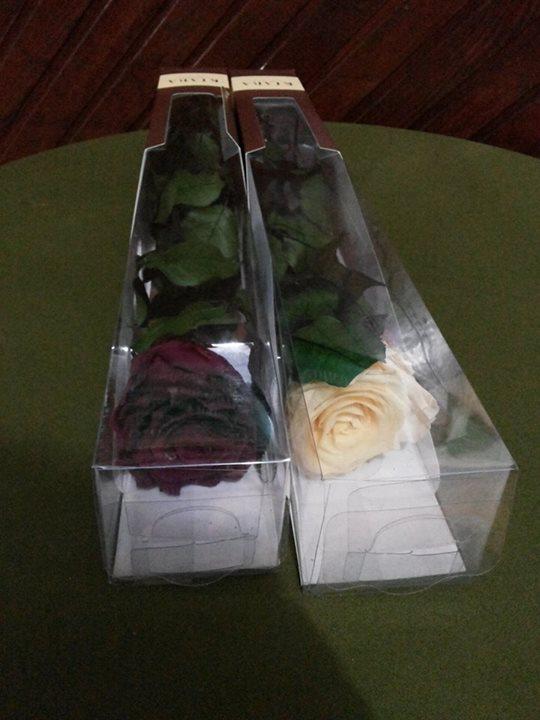 Rosas Moradas y Crema Naturales Preservadas ¡Duran 4 Años! Santa Ana, El Salvador