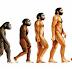 Sekilas Tentang Teori Evolusi