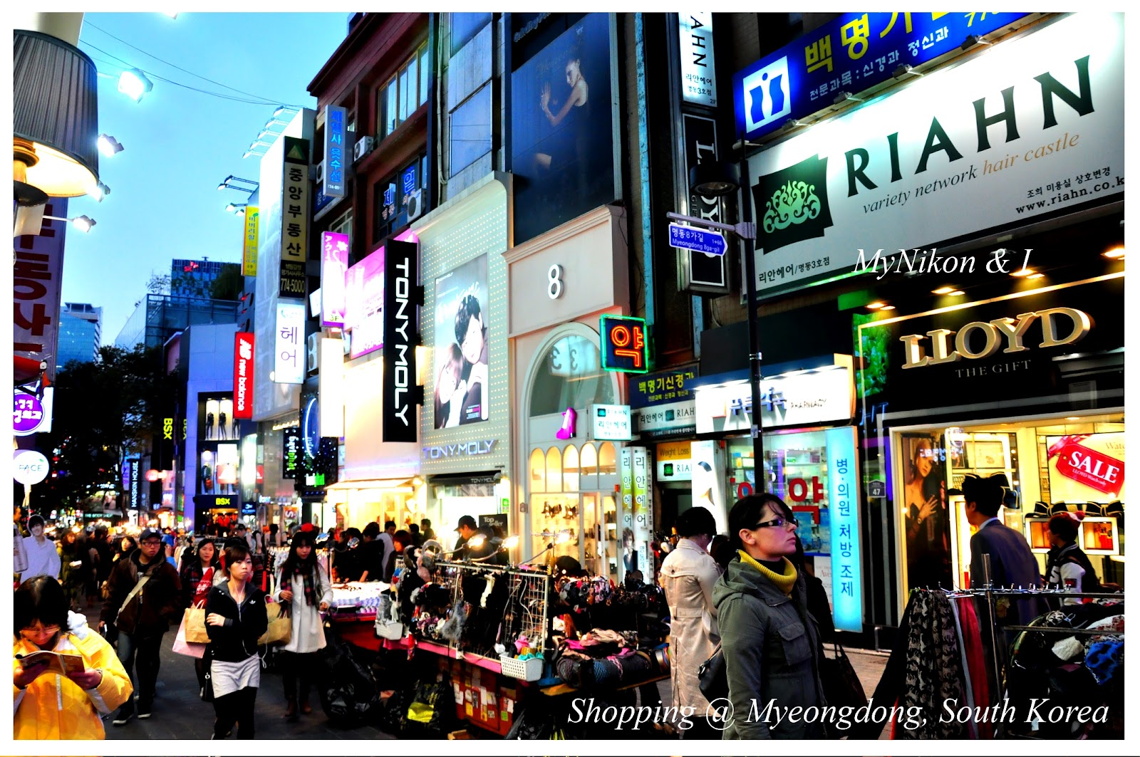 My nikon and i korea seoul shopping haven