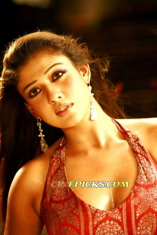South Indian Hot Actresses  Bollywood Images