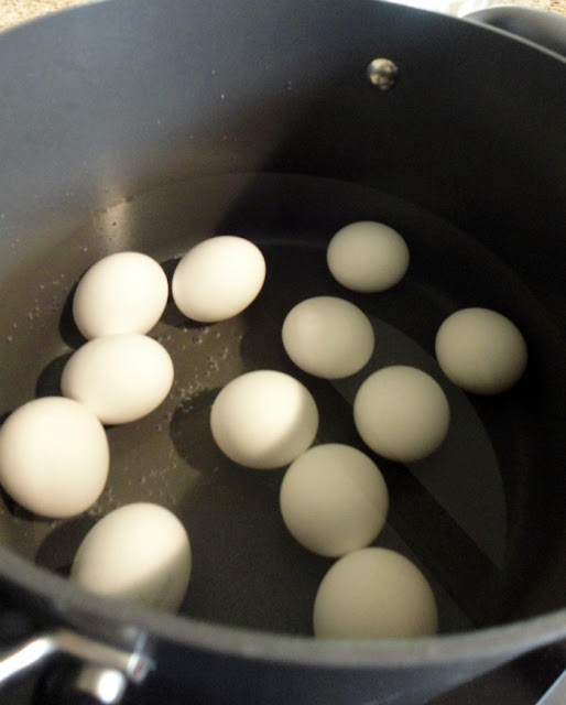 eggs in water