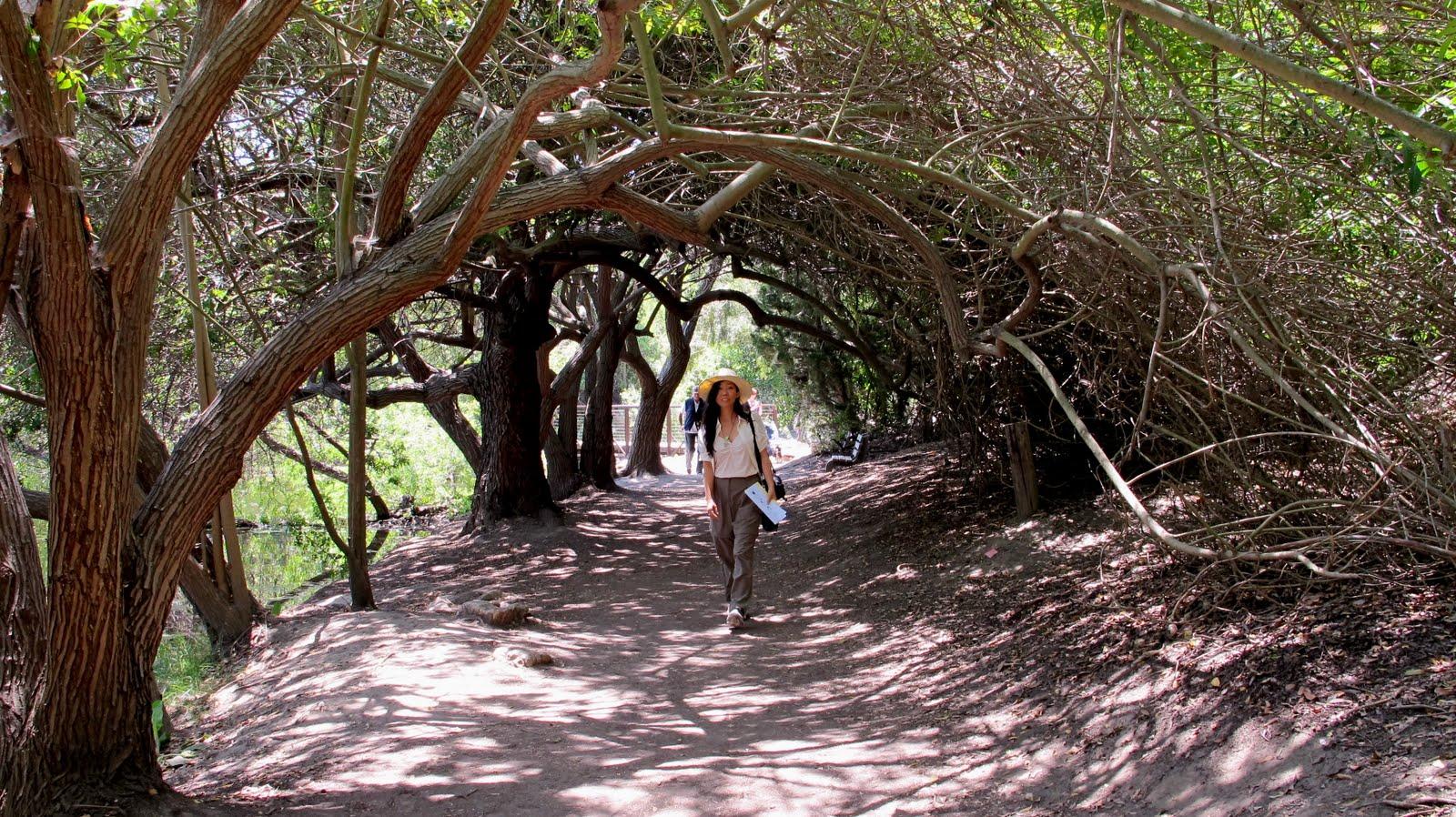 El Dorado Park Nature Center Trail Map