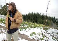 Gull Nathaniel Rappole Farm to Artist