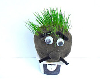 Grow a grass head