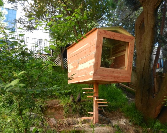 a very funky chicken coop as a tiny house