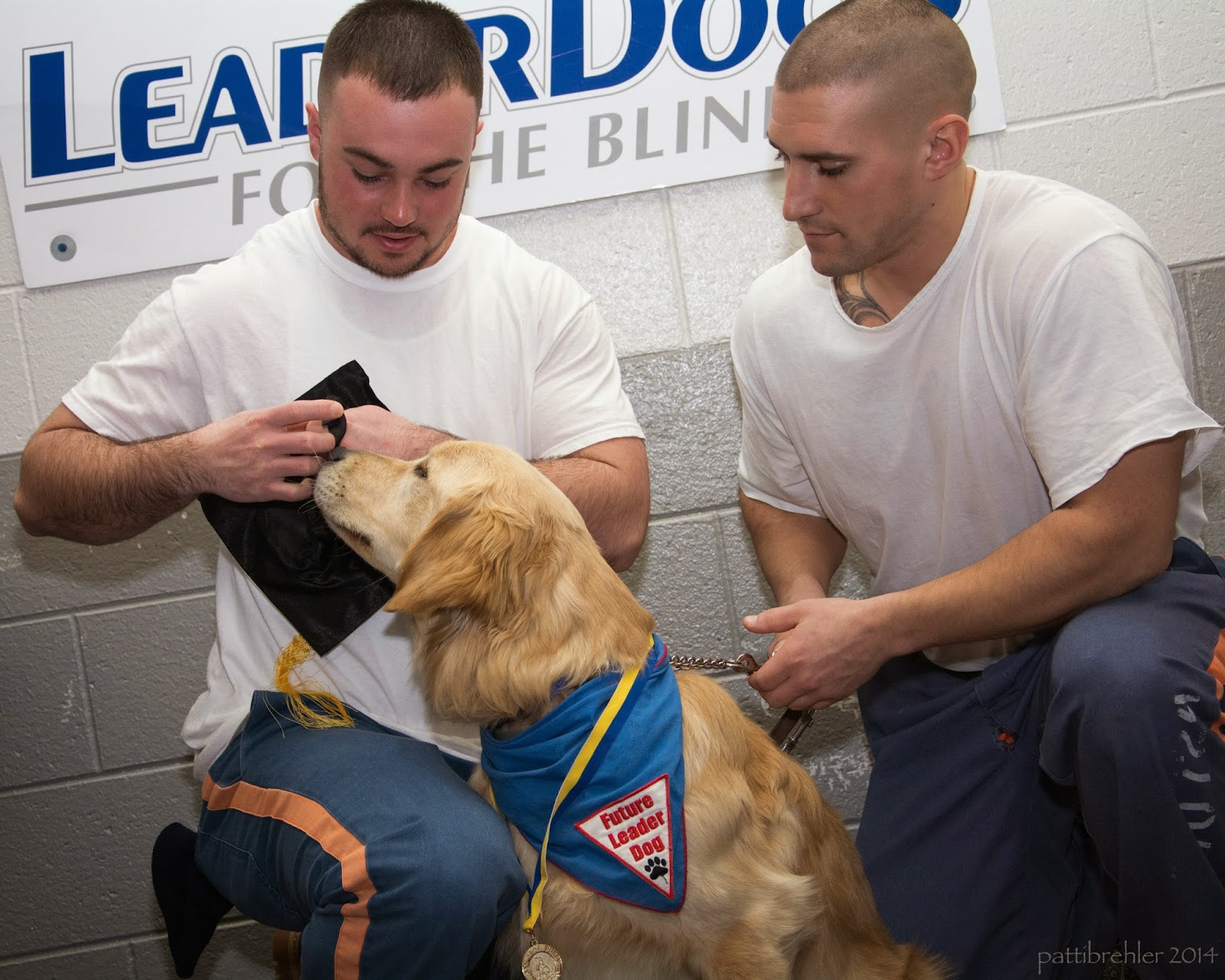Two men wearing white t-shirts and blue pants are kneeling on one knee with a golden retriver betweent hem. They are trying to put a black graduation had on the dog. The dog is wearing a blue bandana with a white triangle patch with red letters that say Future Leader Dog and a black paw print. There is a yellow and blue ribbon around the dog's neck with a medal on it. Behind them on the wall is a poster that says Leader Dogs for the Blind.