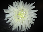 My White Flower