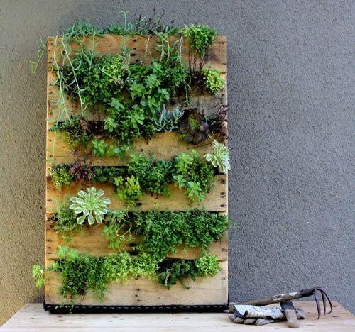 decoracao jardim paletes : decoracao jardim paletes: com paletes reciclados, inspirem-se e reutilizem paletes no jardim