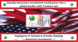 marijuana investment
