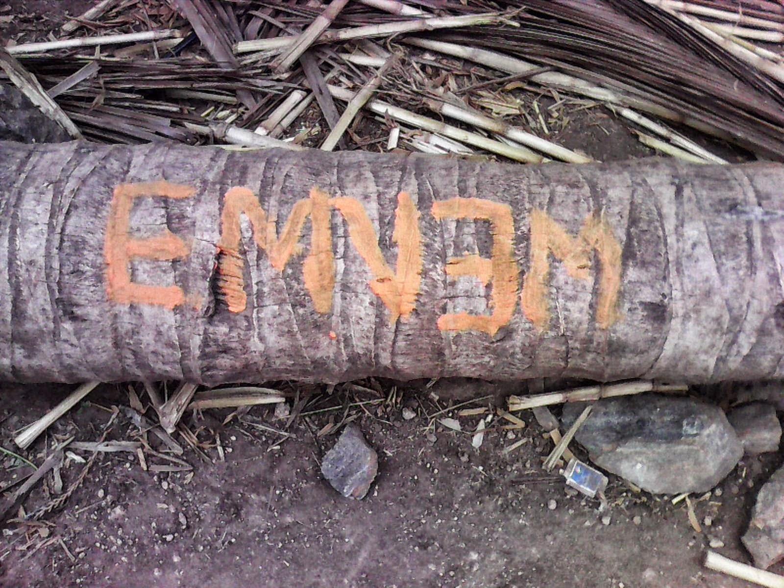 Eminem India, Eminem cow, Village eminem, country eminem,