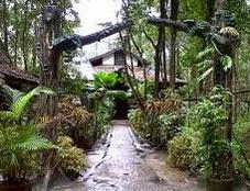 Arboretum Nyaru Menteng