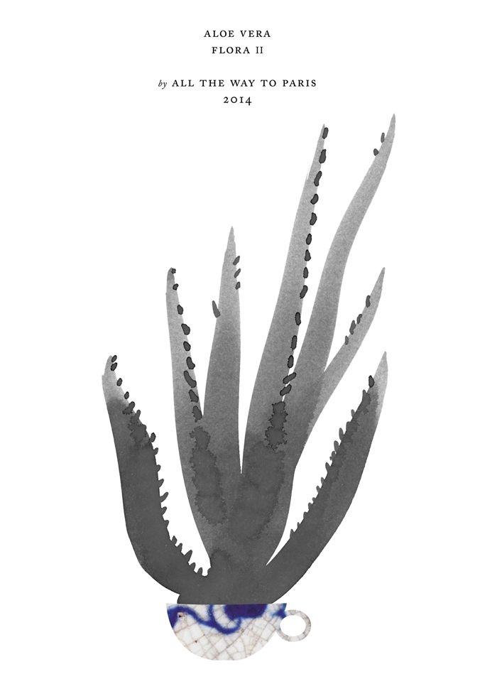 ATWP kaktus plakat