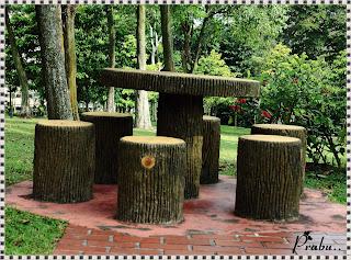 Singapore MacRitchie Reservoir Park-priyamudanprabu