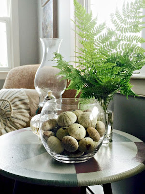ferns, sea urchins, pottery, beach decor, summer house
