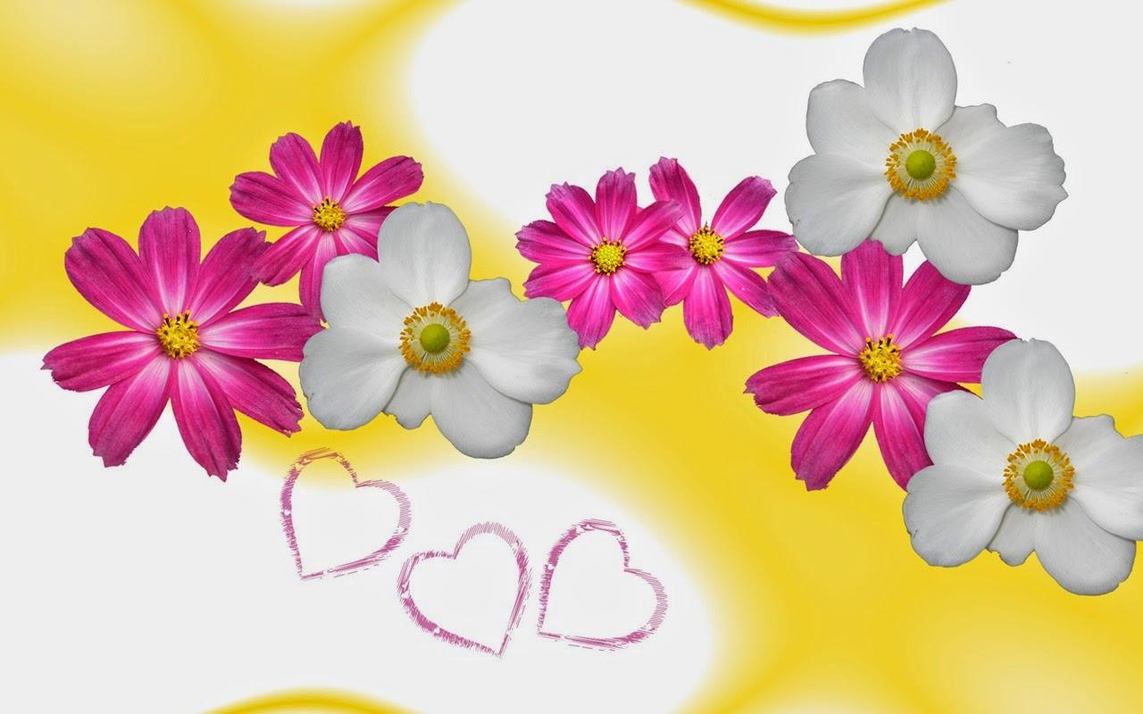 Flowers Cartoon Beautiful Flowers