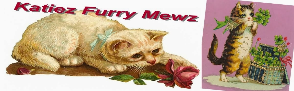 **Katiez Furry Mewz (Newest Blog!)**