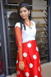 Actress-Bindu-Stills-at-Freedom-From-Corruption-Press-Meet