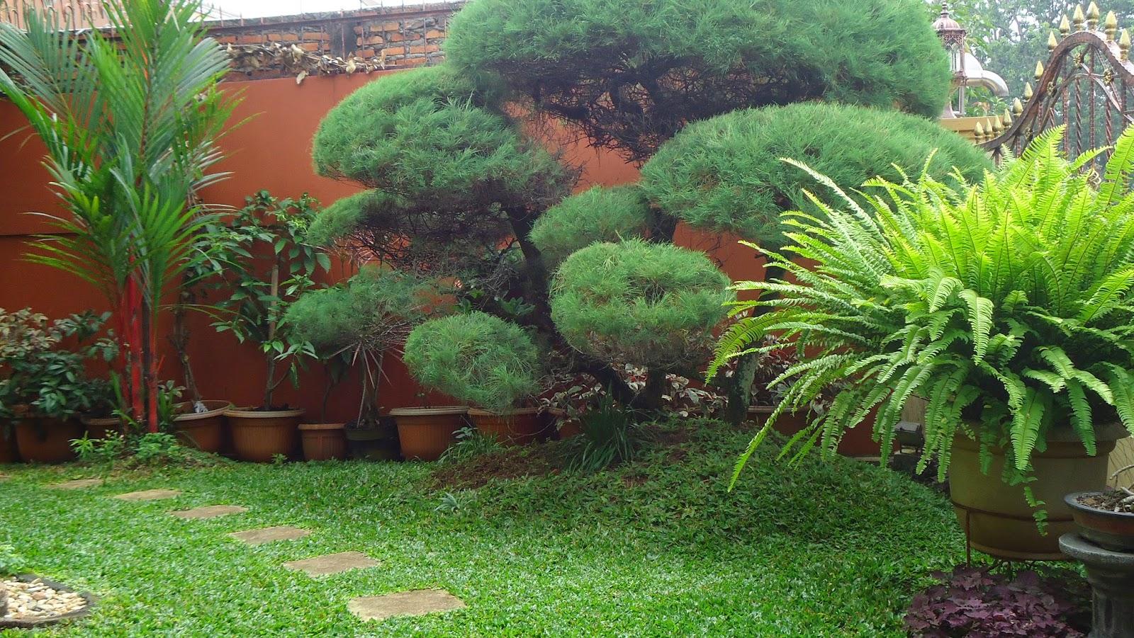 gambar taman rumah minimalis