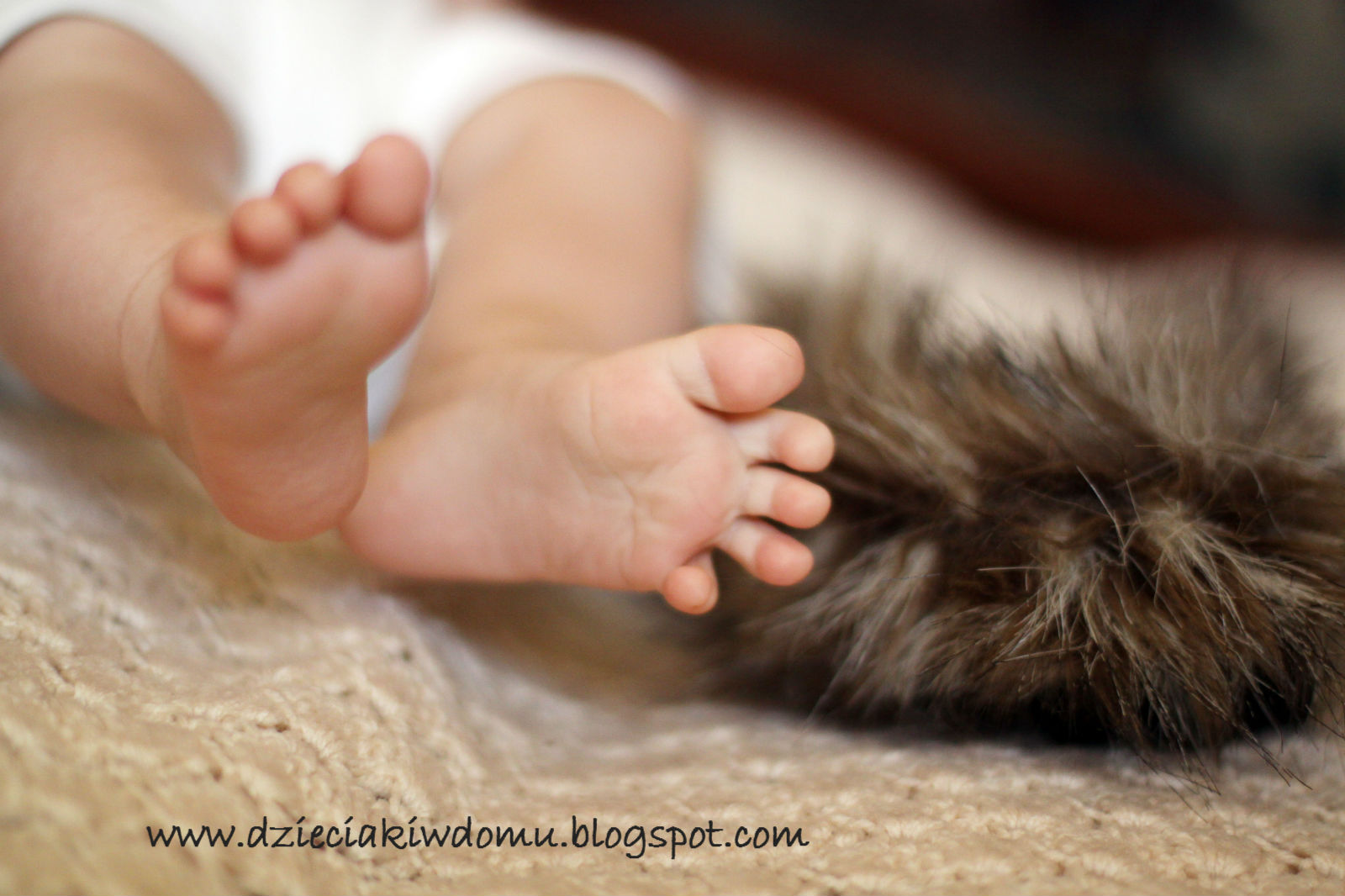 masaż stópek niemowlaka z wykorzystaniem różnych faktur