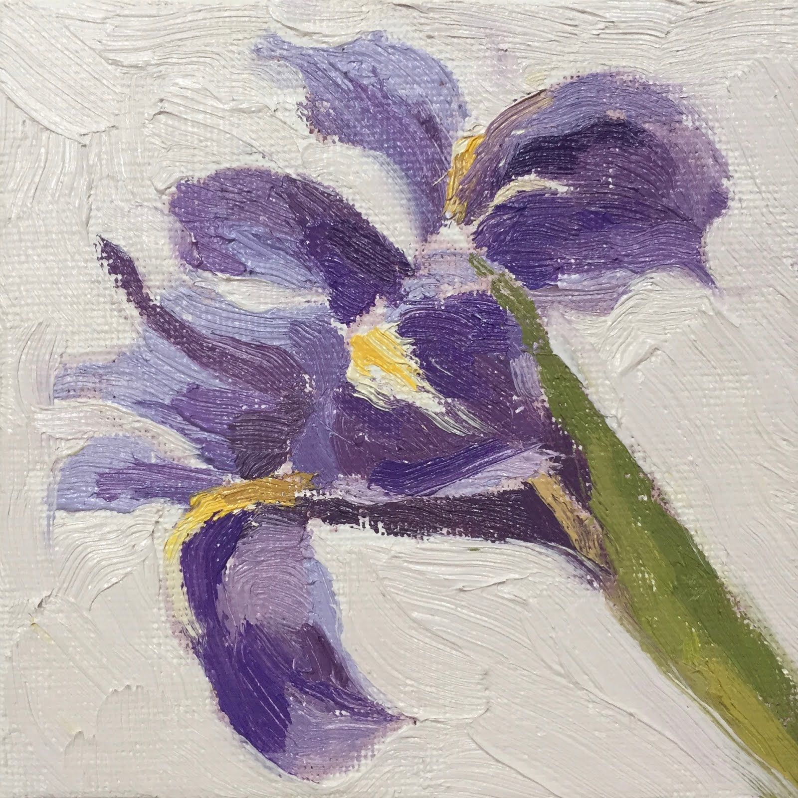 Clare bowen artist daily painting 21 an iris flower 4x4 it was good to try the iris again a close up small painting easier to focus on the colours and tones when there is just a single flower izmirmasajfo