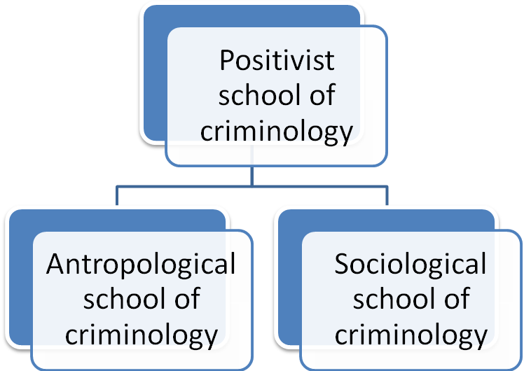 How were schools of thought in criminology established?